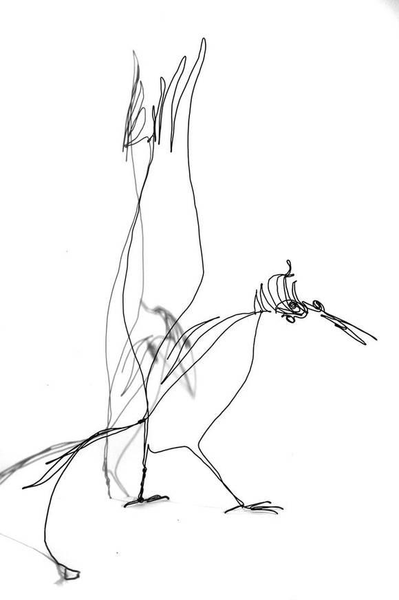 oiseauparadisweb_04-1000jpg
