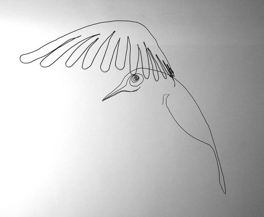oiseauweb_18-1000jpg