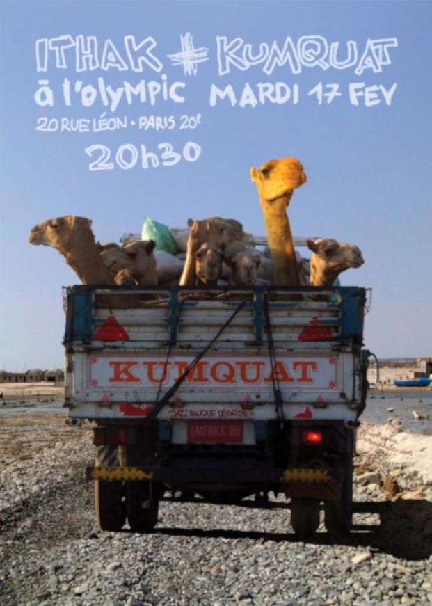 moza2-camelquatrecto-copie-1000jpg