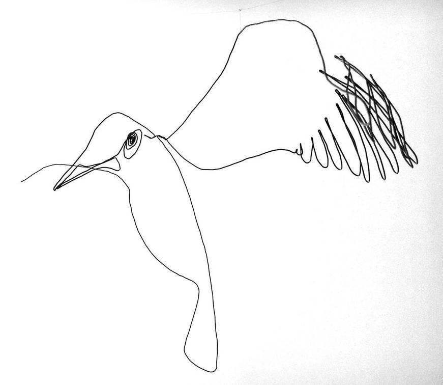 oiseauweb-1000jpg