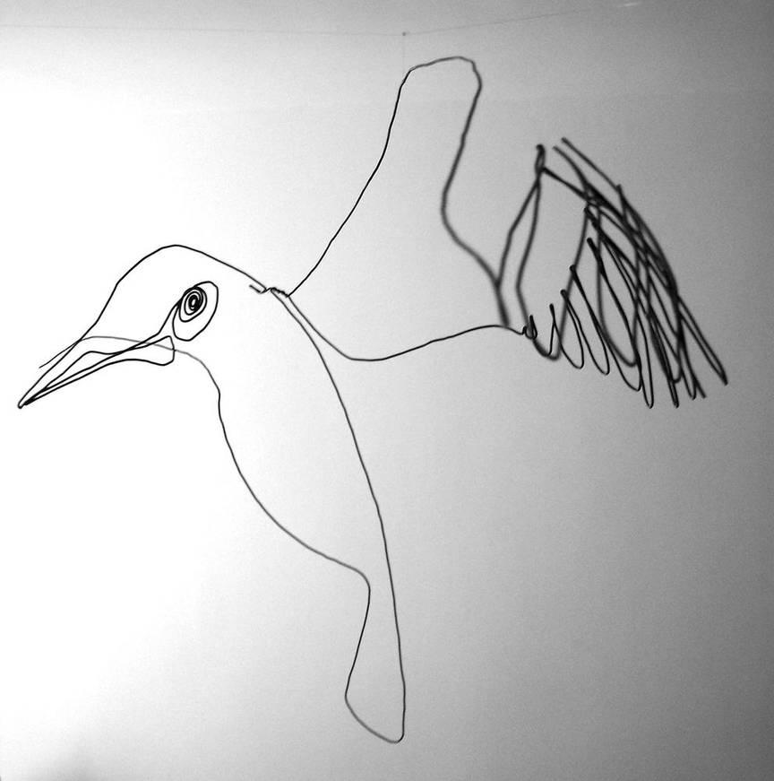 oiseauweb_13-1000jpg