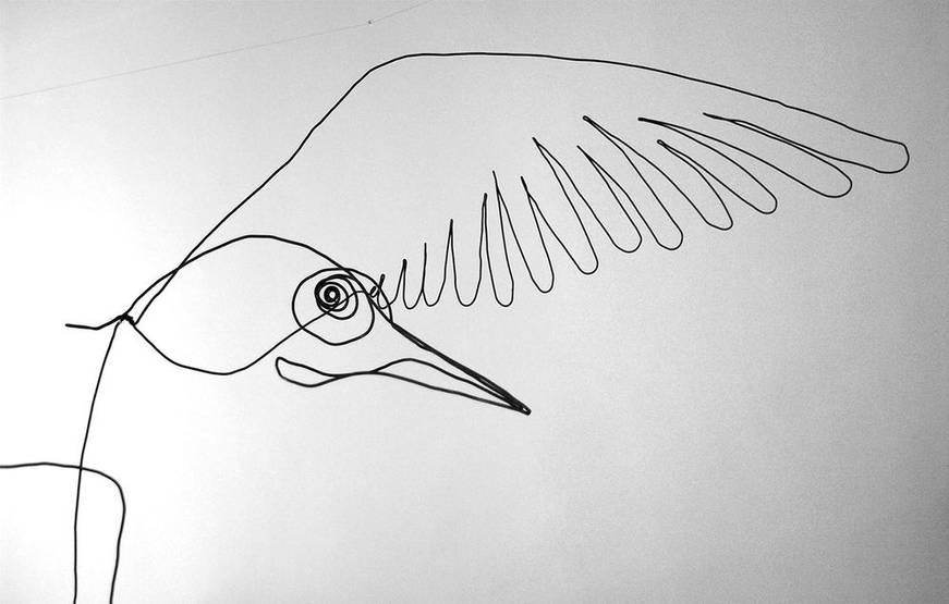 oiseauweb_19-1000jpg