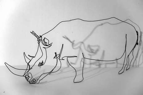 rhinocerosWeb_02-vi.jpg