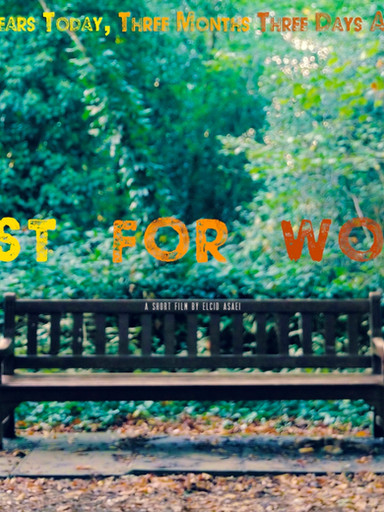 Lost for Words Short Film Review