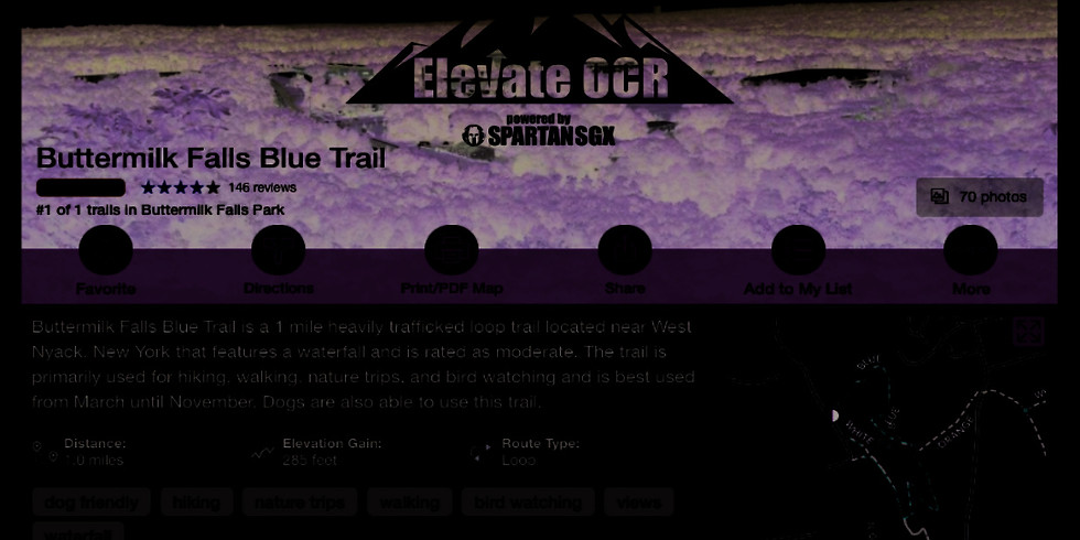 Elevate OCR January Trail Run & Spartan Training