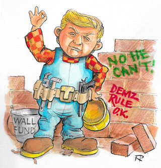 Donald The Builder - Can He Build It?