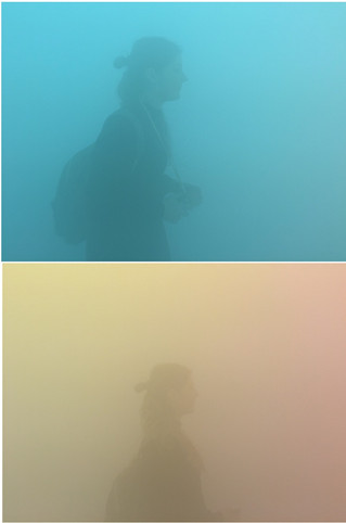 Ann Veronica Janssens: yellowbluepink, The Wellcome Collection