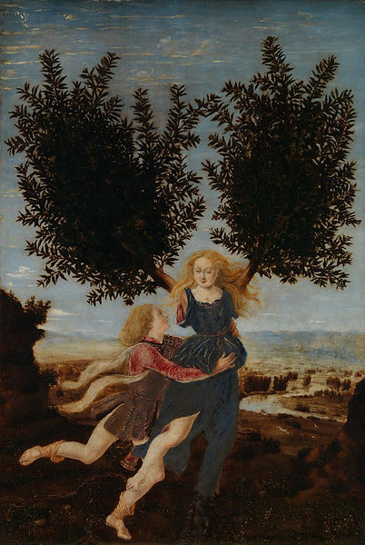 Apollo and Daphne.jpg