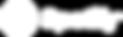 Spotify_Logo_RGB_White_300x90.png