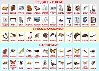 КАРТОЧКИ ГЛЕНА ДОМАНА-МАНИЧЕНКО