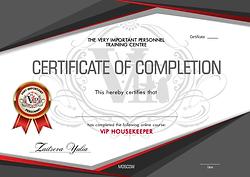 сертификат vip-домработницы