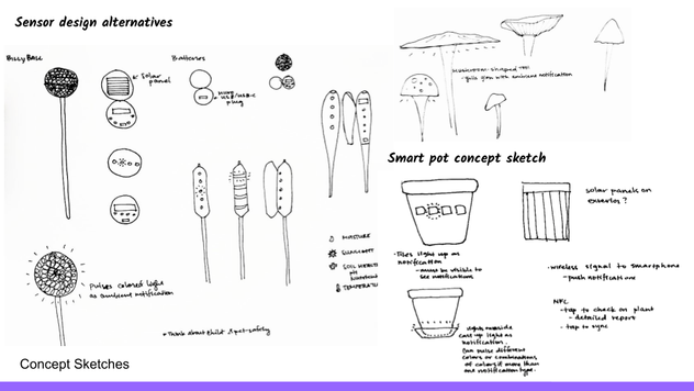 Concepts Exploration (7).png
