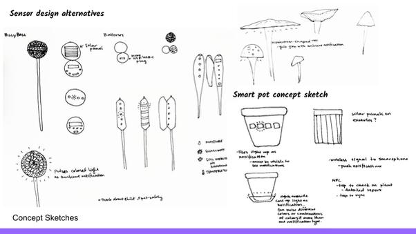 Concepts Exploration (7).png