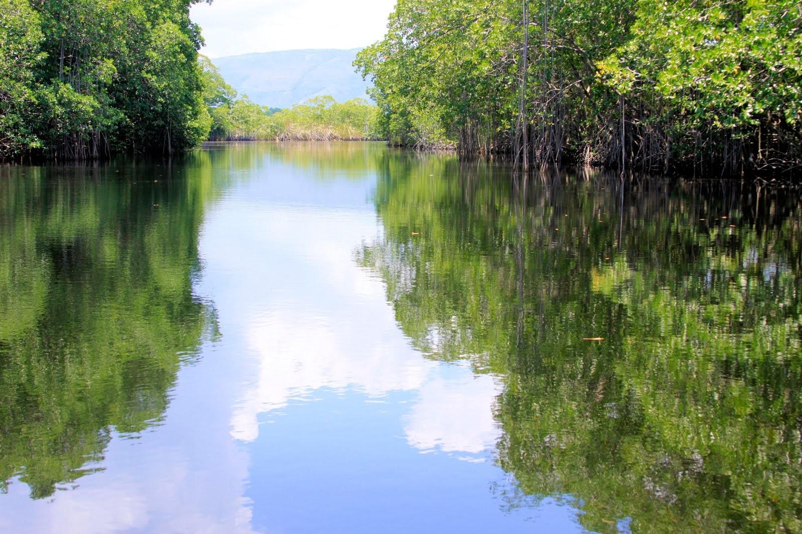 ppp_tran_tours_jamaica_tours_black_river_safari_444_2_1_2_2