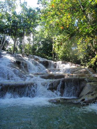 dunn-s-river-falls.89181651_std