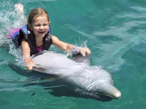 Megan-Dolphin