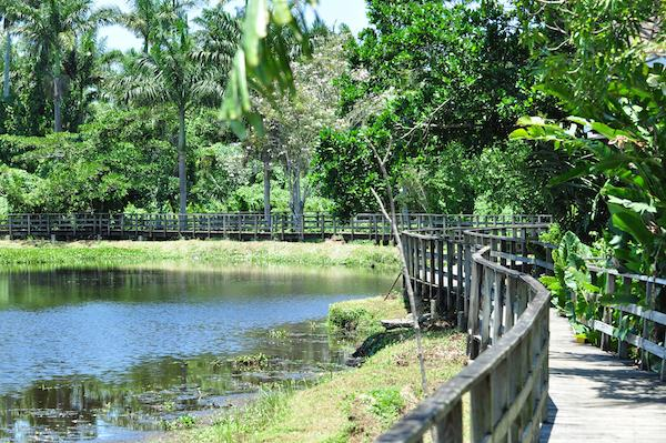 royal-palm-reserve