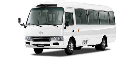 Private Tours Montego Bay