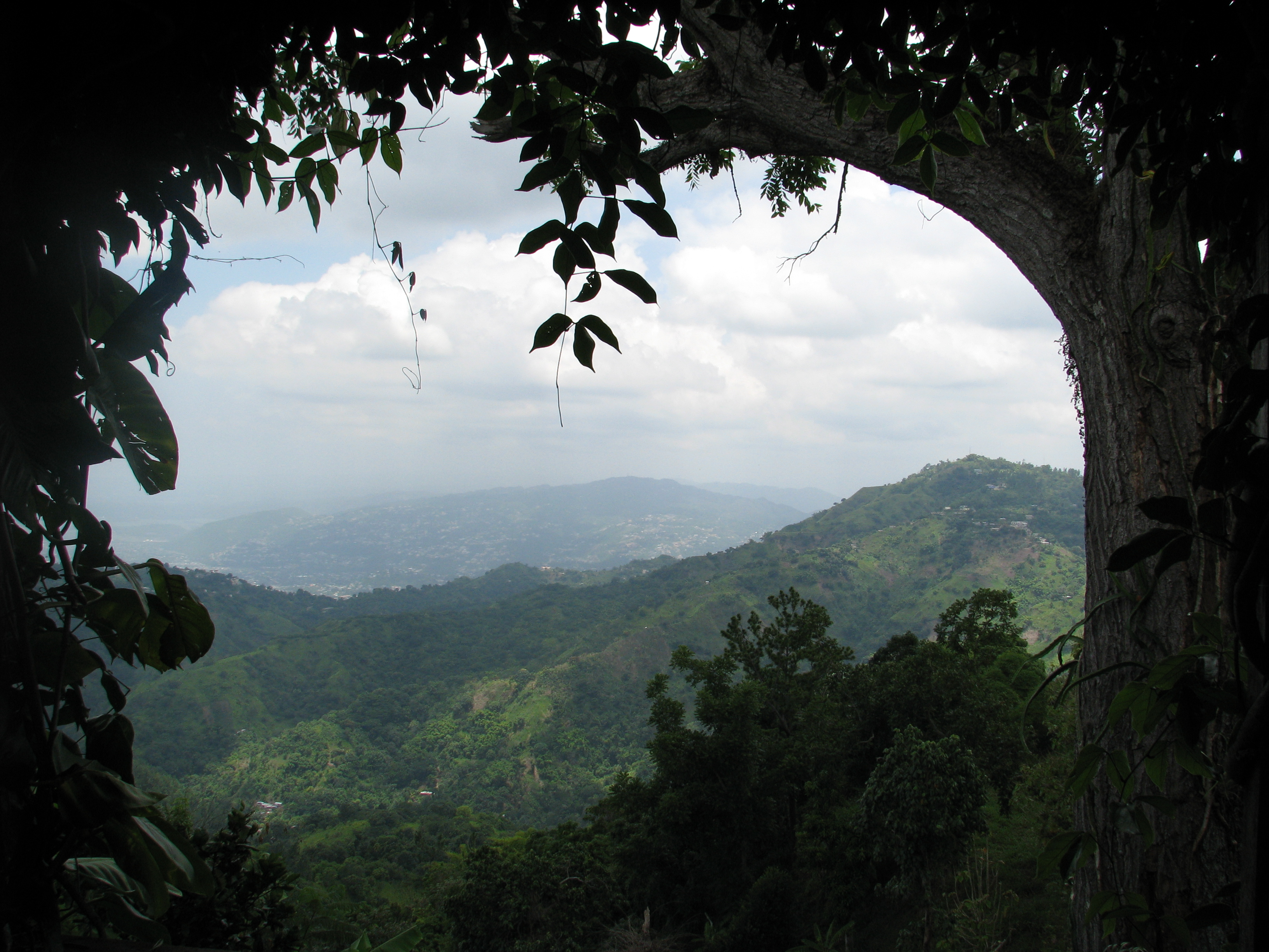 Real_Jamaica_Tour_Packages_Blue_Mountains_Framed
