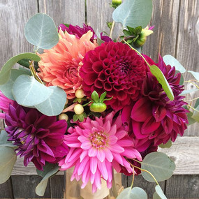 Delivered more dahlia delights this morn