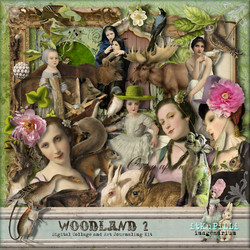 itKuPiLLi_Woodland2