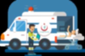 ac_ambulans.png