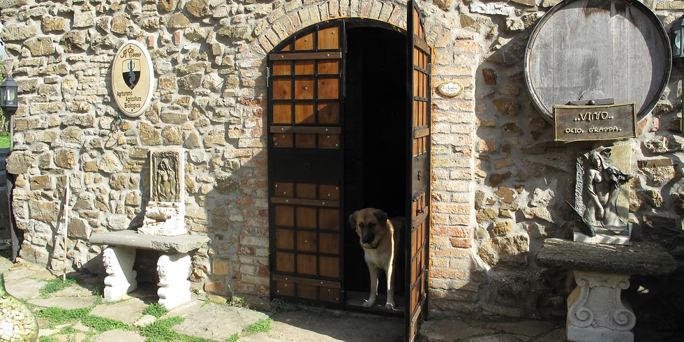 SATURDAY AFTERNOON WINEMAKER'S SERIES:Tasteful Trekking through Tuscany
