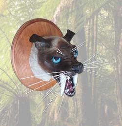Siamese Sabretooth Cat