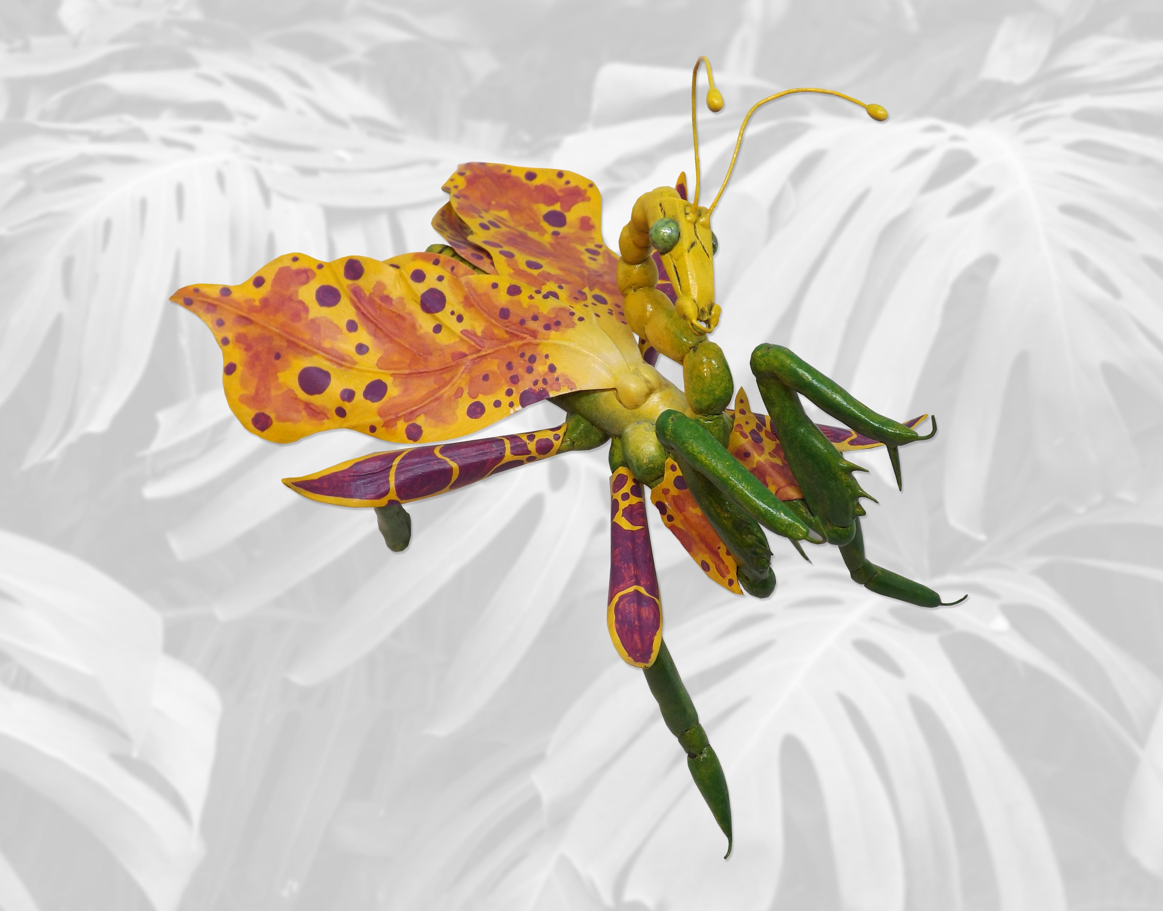 Asesina de Aves Orquídeas