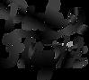 Pink Flight Logo (Black).png