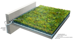 PFGA Designing Green Roofs