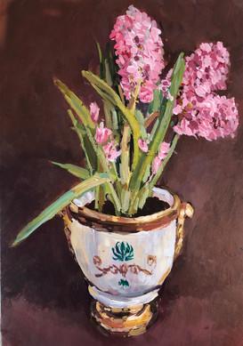 Hyacinths in a classical pot