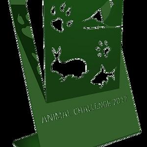 Identité visuelle Animal Challenge 2017