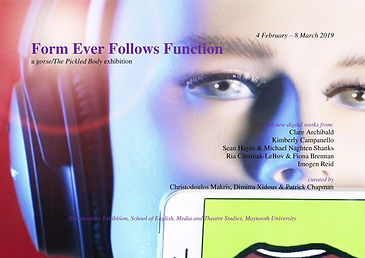 Form Ever Follows Function.jpg