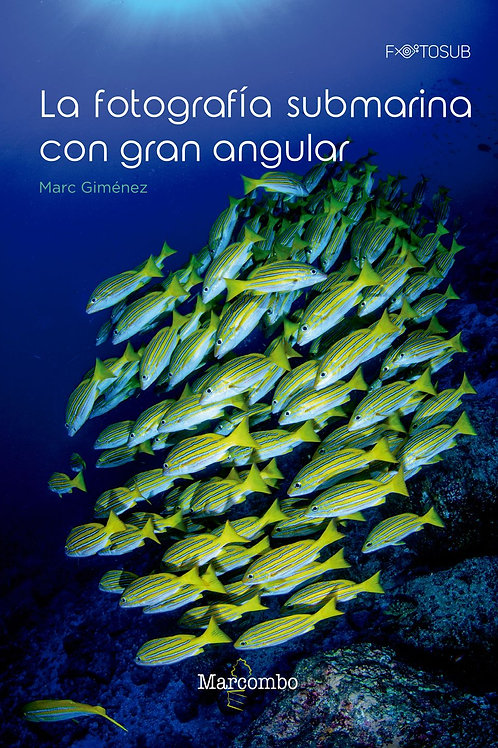 La fotografía submarina con Gran angular