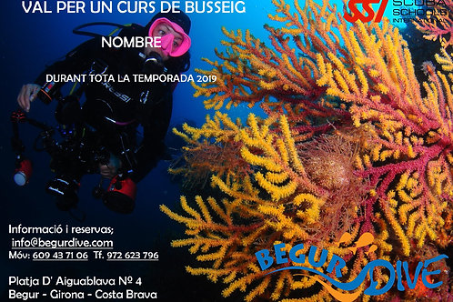 Vale regalo Curso Open Water