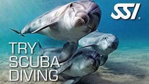 SSI-Try-Scuba-Diving-847x476.jpg