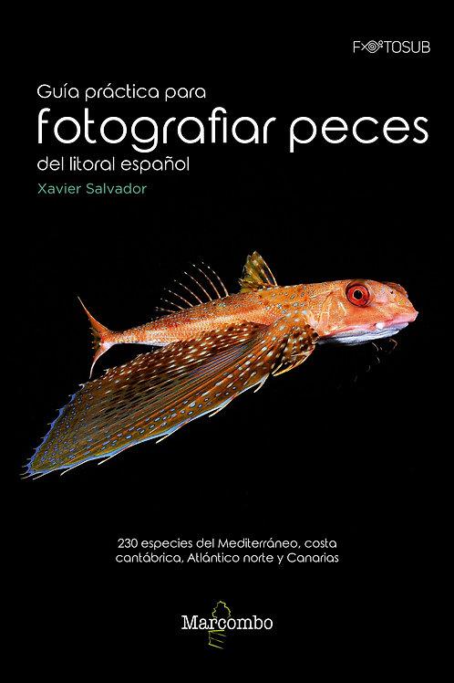 Guía práctica para fotografiar peces