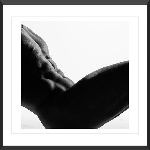 Male Torso #06