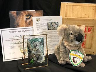 Koala PackageWEB.jpeg