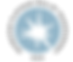2020 Guide Star PrintCMYK_1.5in_Platinum