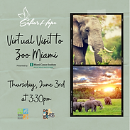 Virtual Visit to Zoo June 2021 IG Post #