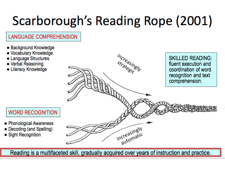 Scarborough's Reading Rope (2001) shows they many skills involved in the act of reading.
