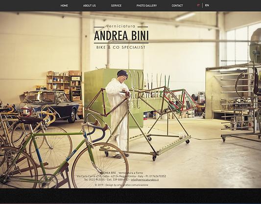 Andrea Bini sito web.png