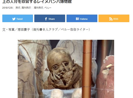 An article about us by Sarai, japanese magazine