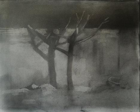 Arbre, 2019 - 40 x 50 cm