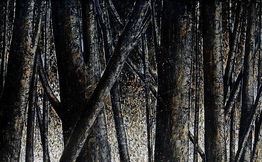 Oscuro Clarté, 2009-200 x 250 cm