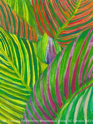 88 'Tropicale' Pam Wootton @kealekekua,  Canada TAE21