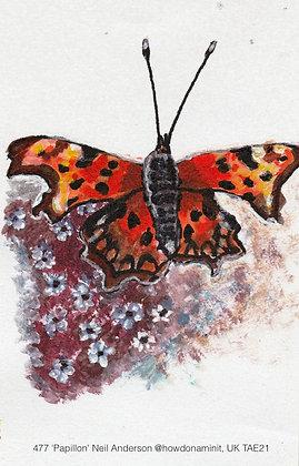 477 'Papillon' Neil Anderson @howdonaminit Manchester. UK TAE21