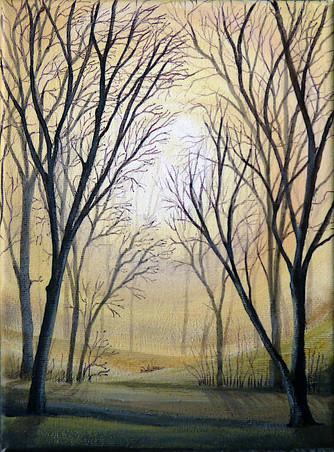 Forest 2 (©Lesley Brockbank)